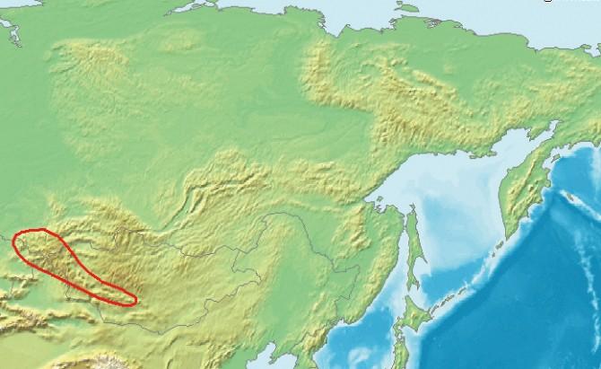 데니소바인 유적과 화석이 발견된 러시아 데니소바 동굴은 알타이 산맥에 있다. 데니소바 동굴은 네안데르탈인이 가장 동쪽으로 진출한 곳이며, 그보다 동쪽(동아시아)에는 데니소바인이 있었을 것으로 추정된다. - 위키미디어 제공